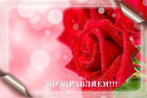 Поздравительная рамка с розами